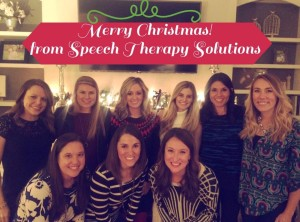 Merry Christmas from the STS staff!